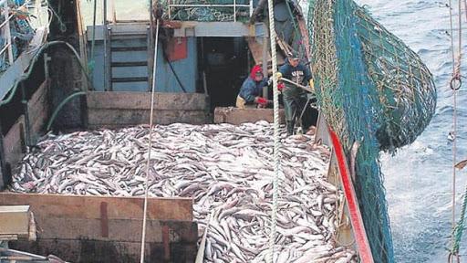 Malvinas y los recursos pesqueros