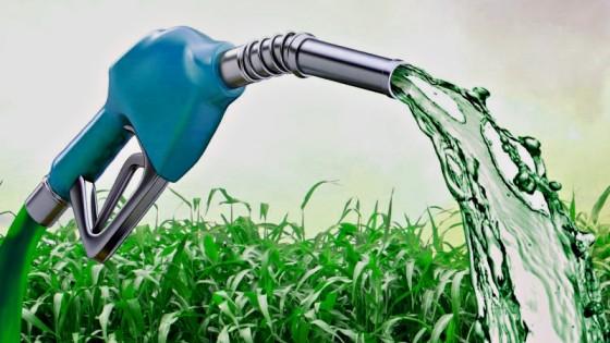 ¿Biocombustibles o agrocombustibles? ¿Sustentabilidad o negocio?