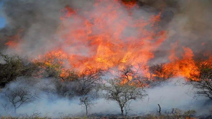 Córdoba en llamas
