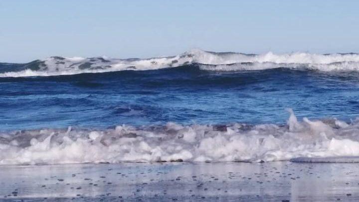 No a las plataformas hidrocarburíferas  en el mar argentino