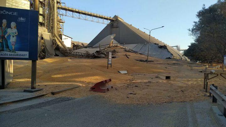 Derrumbe de silo en Bunge. Los agronegocios y su larga lista de externalidades