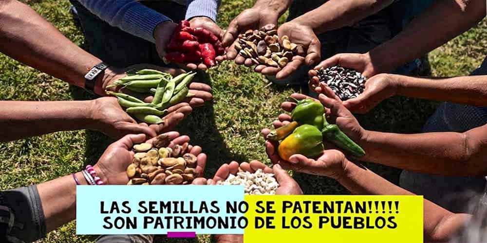 Los genes y las semillas no se patentan