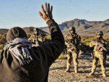 Comunicado mapuche